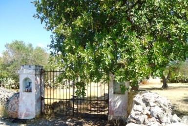 Parabita - casa in campagna da ristrutturare