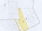 MAPP (Medium)