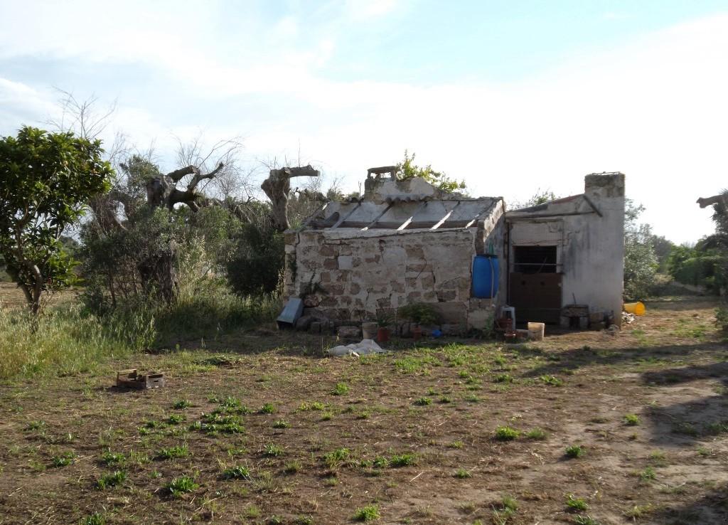 Casa rurale in campagna tra Matino e Gallipoli in vendita
