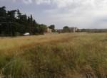 Terreno edificabile a Matino