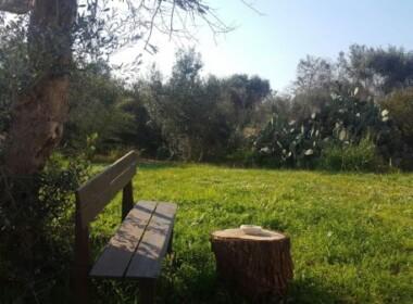Villa_vendita_Taviano_foto_print_587704642